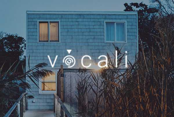 Vocali-Voz-Inteligencia-Artificial-2018